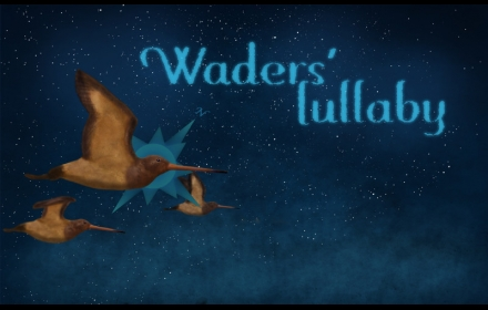 WADERS´ LULLABY